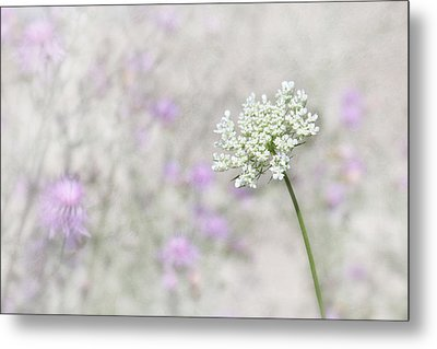 Lavender And Lace Metal Print by Lori Deiter