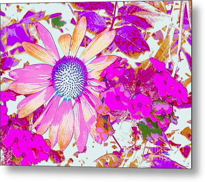 Metal Print featuring the photograph Lavender Echinacea by Annie Zeno