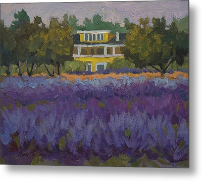 Lavender Farm On Vashon Island Metal Print by Diane McClary