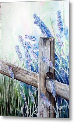 Lavender Fenced Garden  Metal Print by Kay Lodahl