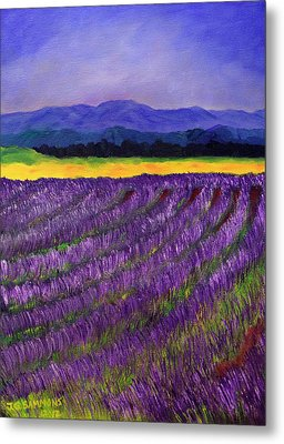 Lavender Fields Metal Print by Janet Greer Sammons