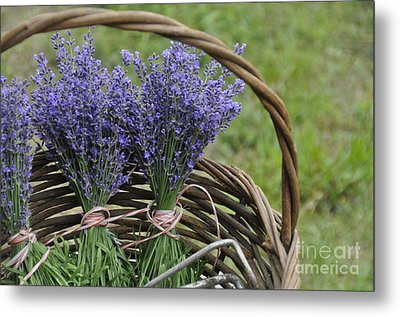 Metal Print featuring the photograph Lavender In A Basket by Cheryl McClure