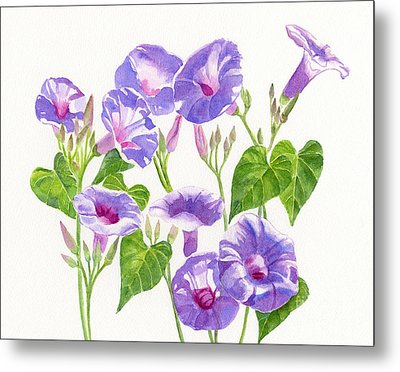 Lavender Morning Glory Flowers Metal Print by Sharon Freeman