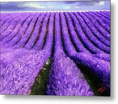 Lavender Straight Metal Print by James Shepherd