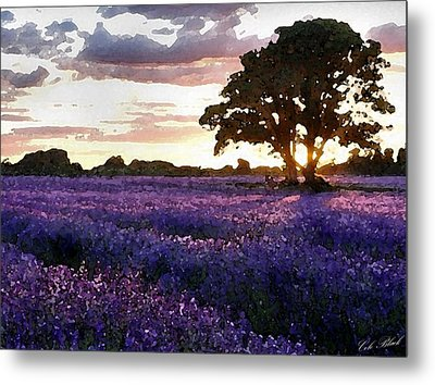 Lavender Sunset Metal Print by Cole Black