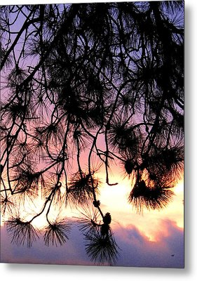 Lavender Sunset Painting Metal Print by Will Borden