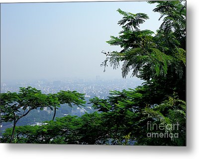 Layers Of Tree Metal Print