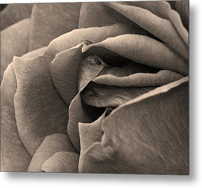 Metal Print featuring the photograph Layers Unfurled  by Robert Culver