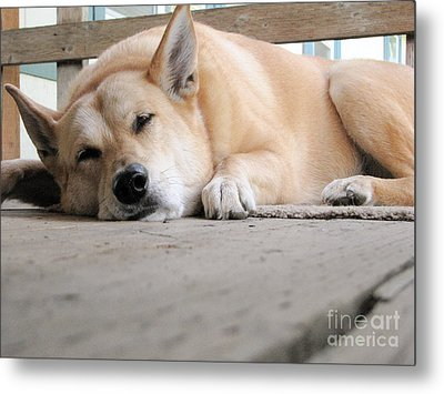 Lazin' On The Porch Metal Print by Rory Sagner