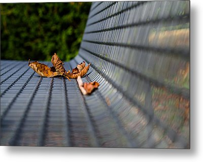 Lazing In The Sun Metal Print by Andreas Levi