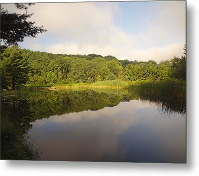 Lazy Afternoon Metal Print by Michael Porchik