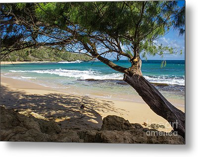 Lazy Day At The Beach Metal Print by Suzanne Luft