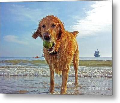 Lazy Summer Days At The Beach Metal Print by Nishanth Gopinathan