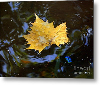 Leaf In Pond Metal Print