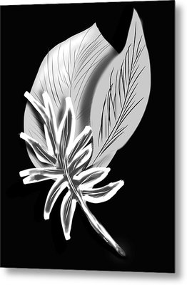 Leaf Ray Metal Print by Christine Fournier