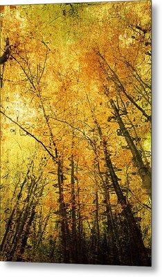 Leafy Canopy Iv Metal Print by Natalie Kinnear