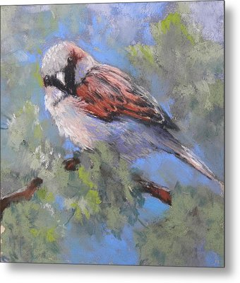 Leafy Perch Metal Print by Jackie Simmonds