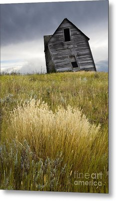 Leaning A Little Metal Print by Bob Christopher