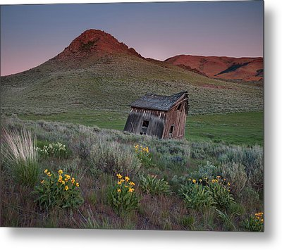 Leaning Shed Metal Print by Leland D Howard