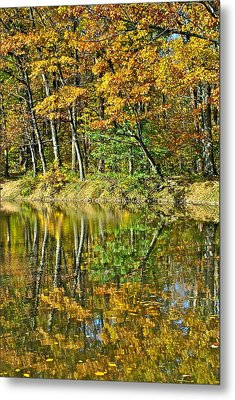 Leaning Trees Metal Print by Frozen in Time Fine Art Photography