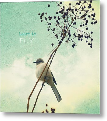 Learn To Fly Metal Print