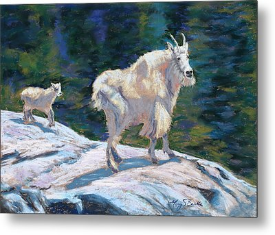 Learning To Walk On The Edge Metal Print