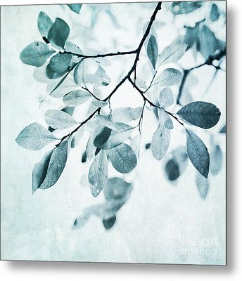 Leaves In Dusty Blue Metal Print by Priska Wettstein