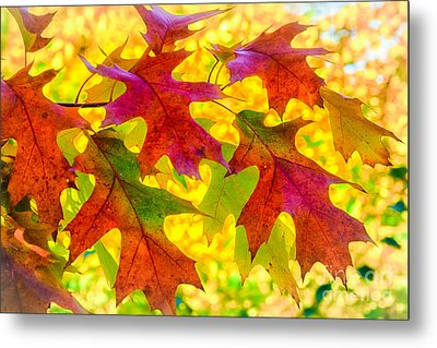 Leaves Metal Print by Janis Knight
