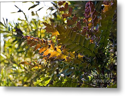 Leaves Metal Print by Kate Brown