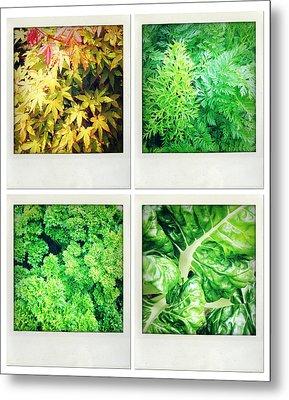 Leaves Metal Print by Les Cunliffe