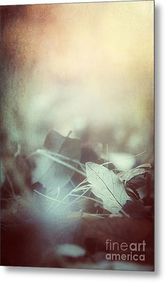 Leaves Of Time  Metal Print