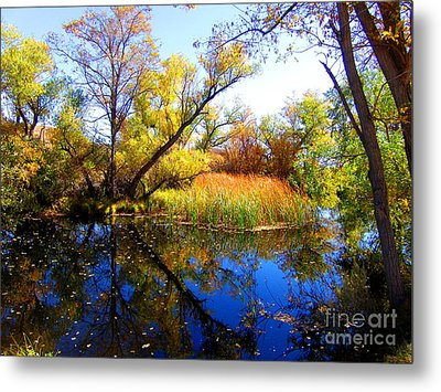 Leaves On The Pond Metal Print
