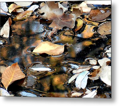 Leaves On The Waters Metal Print by Chris Gudger