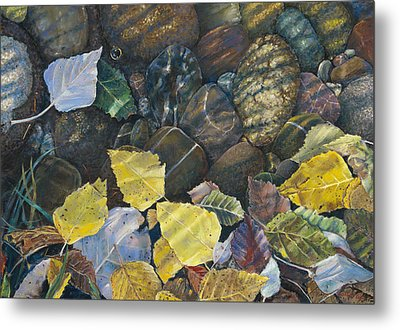 Leaves  Water And Rocks Metal Print