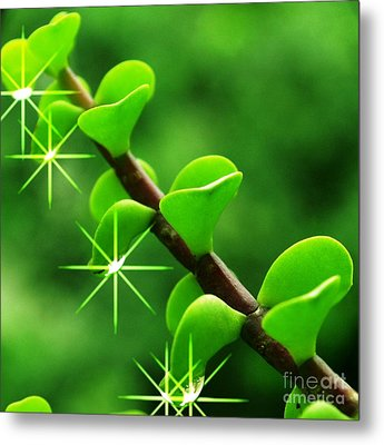 Leaves With Stars Metal Print by Jyoti Vats
