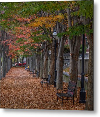 Metal Print featuring the photograph Leaving by Glenn DiPaola