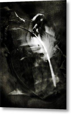 Leda And The Swan Metal Print by Rebecca Sherman