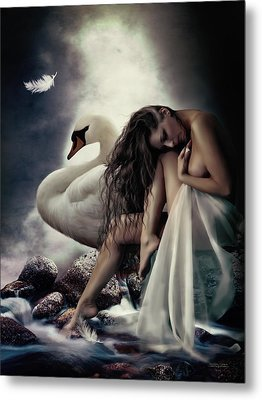 Leda And The Swan Metal Print by Shanina Conway