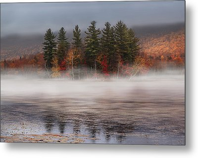 Lefferts Pond Metal Print by Magda  Bognar