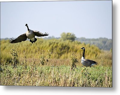 Left Behind Metal Print by Bonfire Photography