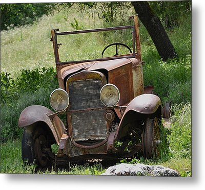 Metal Print featuring the photograph Left To Die by Debby Pueschel