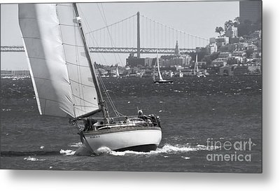 Leisure Sailor Metal Print