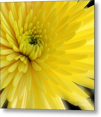 Lemon Mum Metal Print