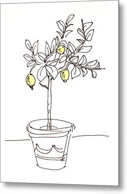 Lemon Tree Metal Print by Karin Stein