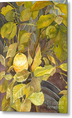 Metal Print featuring the painting Lemon Tree by Sandy Linden
