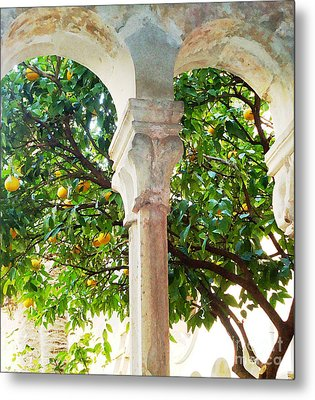 Lemon Tree Very Pretty				 Metal Print by Ann Johndro-Collins