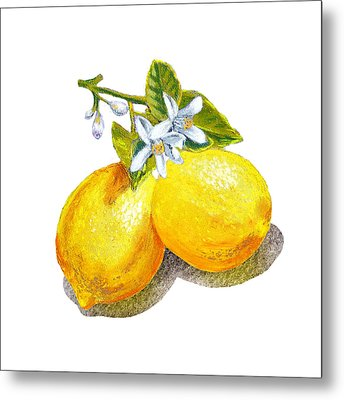 Metal Print featuring the painting Lemons And Blossoms by Irina Sztukowski