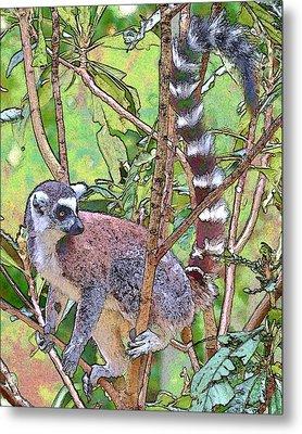 Lemur Sketch Metal Print by Dan Dooley