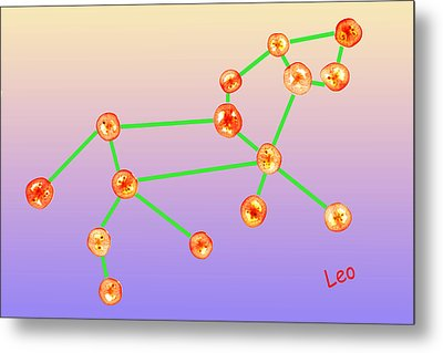 Leo Constellation Composed By Tomato Slices Food Art Metal Print by Paul Ge