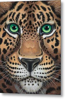 Wild Eyes Leopard Face Metal Print by Tish Wynne